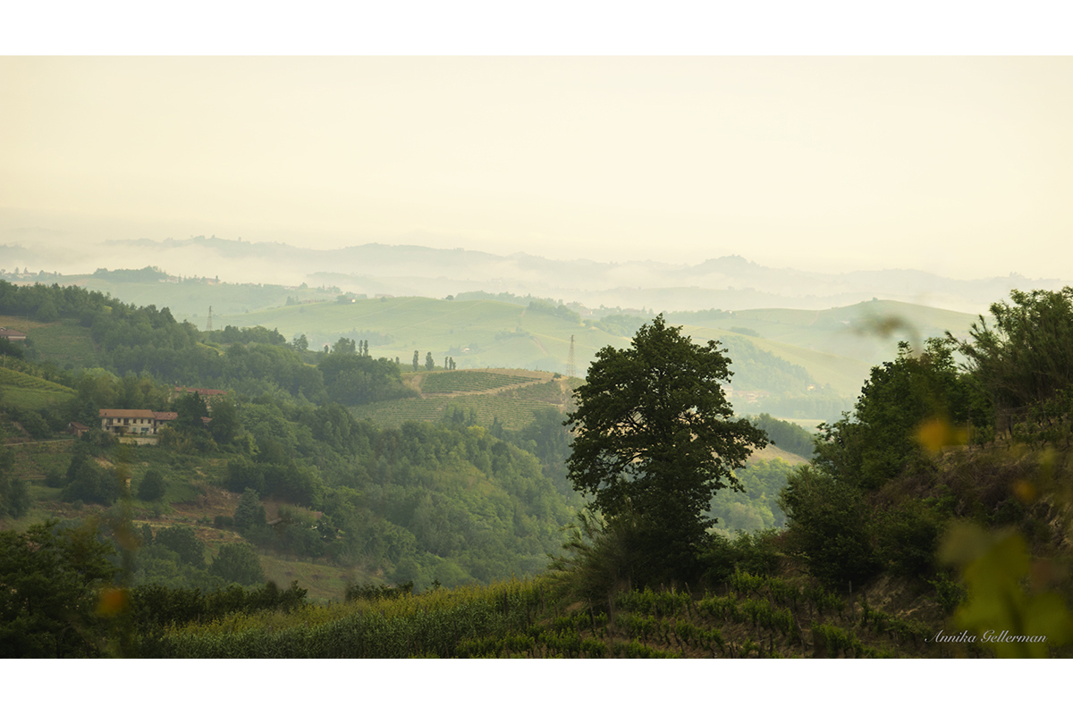 Cassinasco (AT) a mountain community and protected area, in the heart of the region of the Langhe Piemontesi (UNESCO World Heritage).